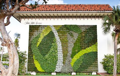 Muros verdes y ca ones urbanos ayudan a reducir la for Paredes verticales de plantas